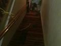 carpet-install-1802
